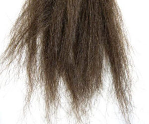 image-of-chatter-hair